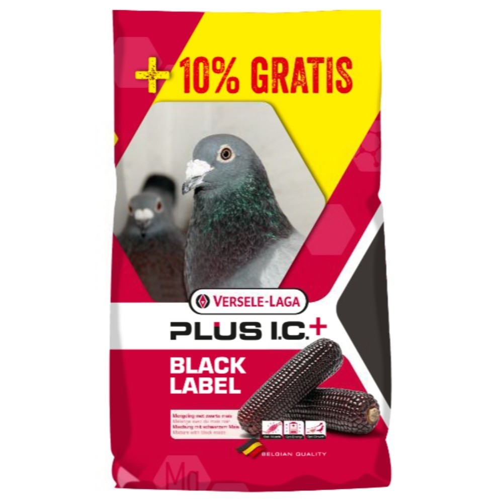 VL Gerry Plus I.C. Black 20+2kg GRATIS