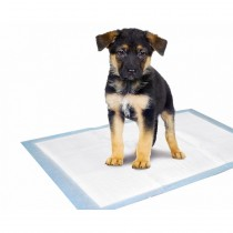 PUPPY TRAINING MAT 5stk